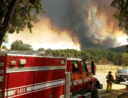 Why Wildfires Have Gotten Worse and What We Can Do About It